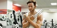 Wolverine Wax Statue