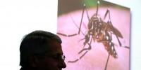 NIAID Chief Anthony Fauci Discusses Future Of Zika Virus Presence